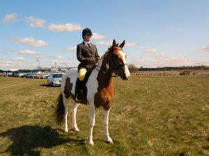 horse-rider-1336044682fpH